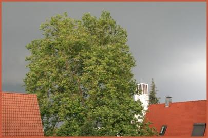 Aussicht mit aufkommendem Gewitter