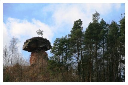 antetanni-unterwegs_Saarland+Rheinland-Pfalz (9)