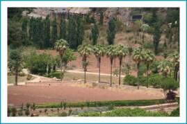 antetanni-unterwegs_Mallorca (10)