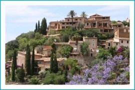 antetanni-unterwegs_Mallorca (11)
