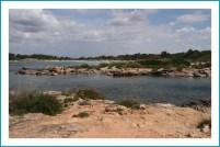 antetanni-unterwegs_Mallorca (16)