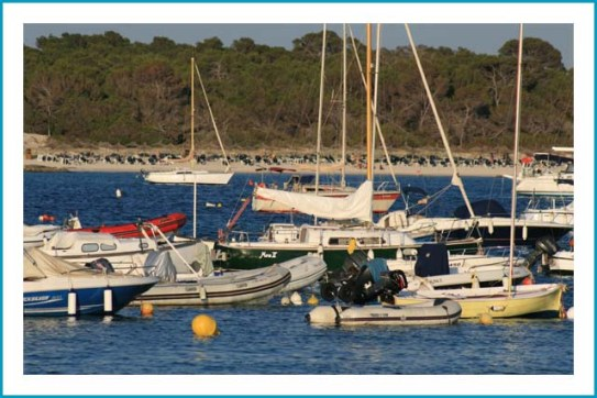 antetanni-unterwegs_Mallorca (21)