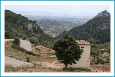 antetanni-unterwegs_Mallorca (9)