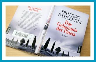 Buch_Fruttero+Lucentini_Das-Geheimnis-der-Pineta