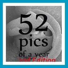 antetanni-fotografiert_button_fotoprojekt2