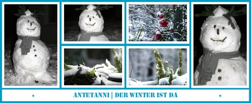 antetanni-fotografiert_Der-Winter-ist-da_Dezember-2014