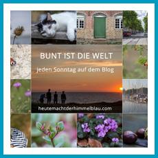 antetanni_linkparty_bunt-ist-die-welt_heute-macht-der-himmel-blau