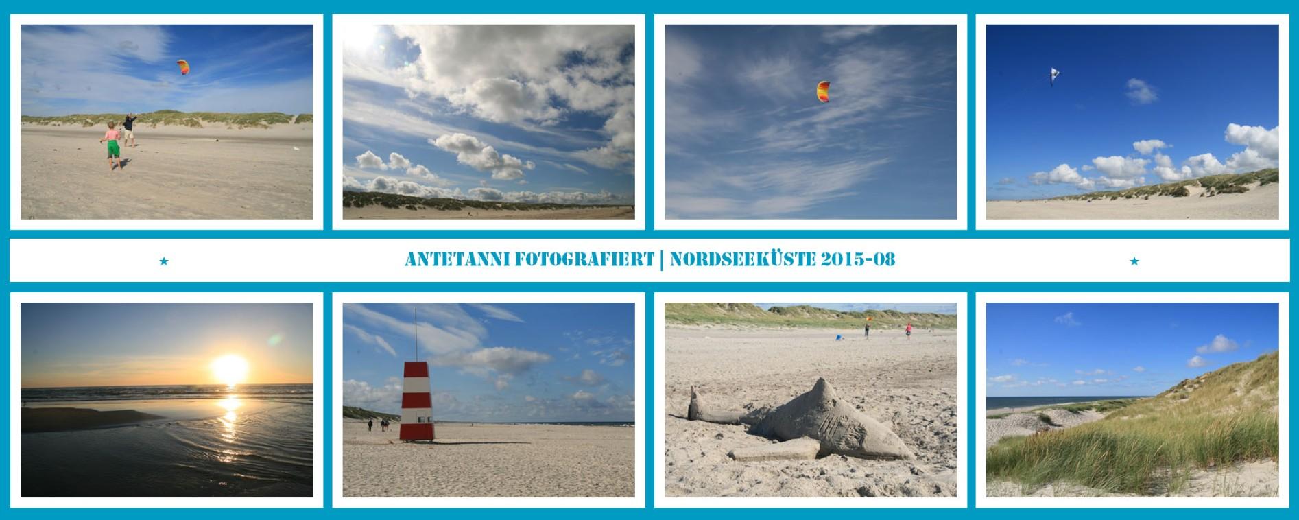 antetanni-fotografiert_Daenemark-2015-2