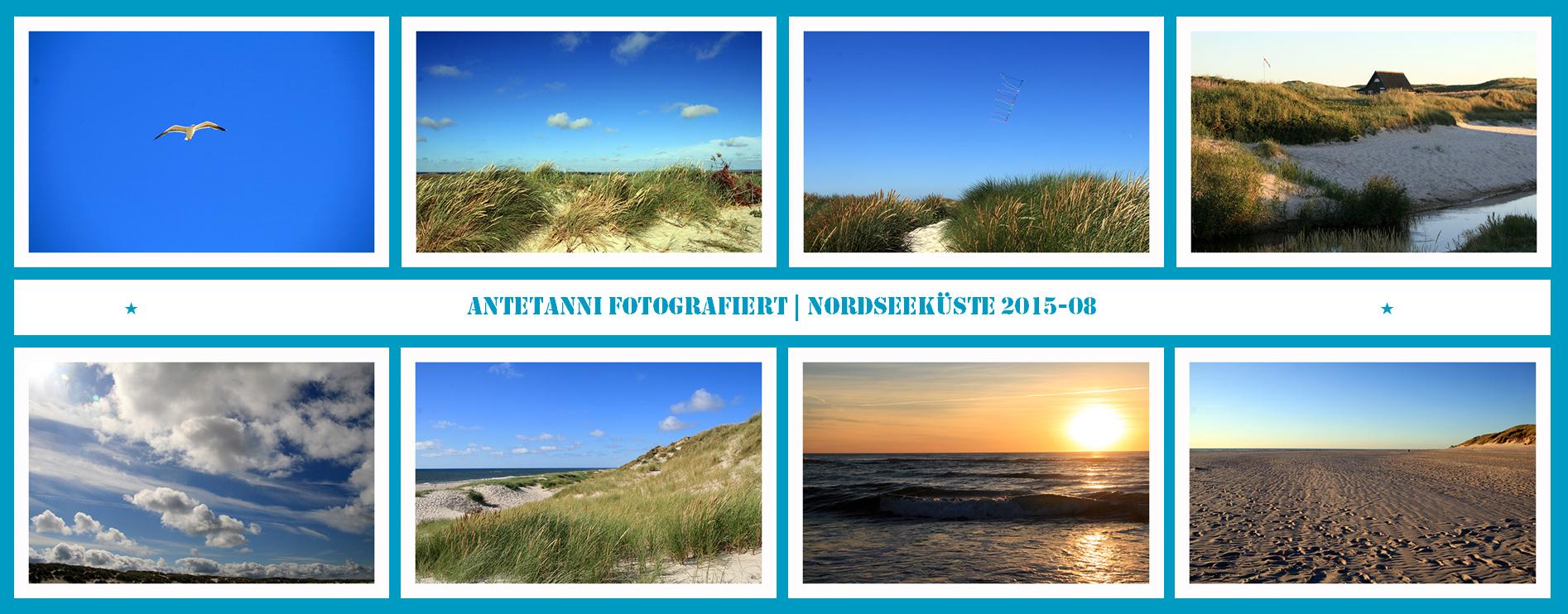 antetanni-fotografiert_Daenemark-2015