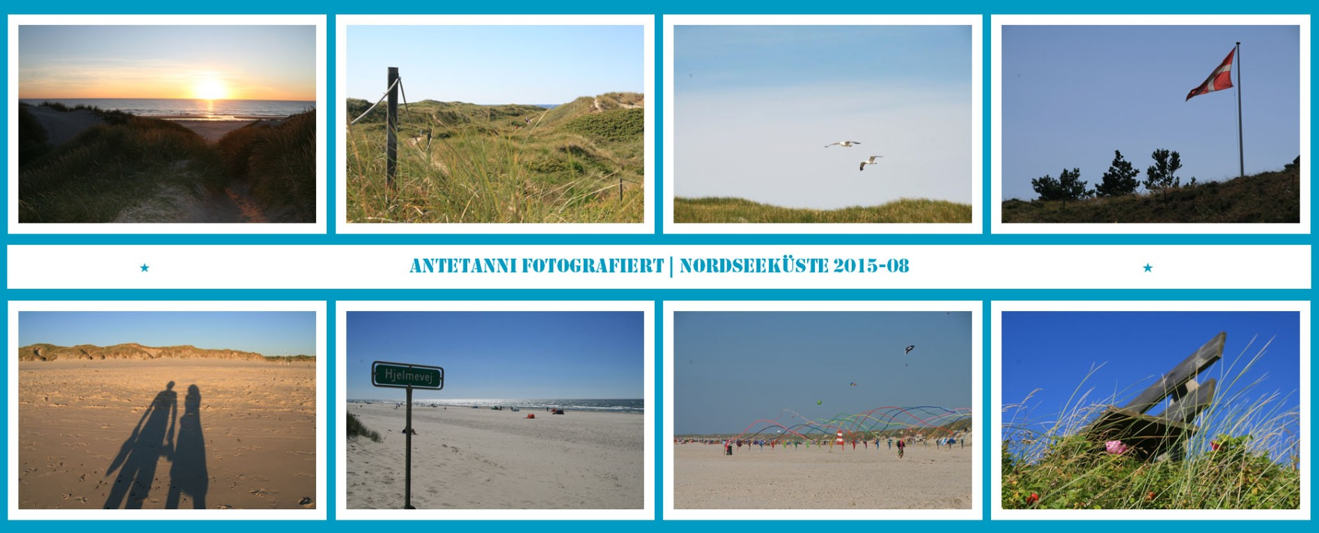 antetanni-fotografiert_Daenemark-2015_3
