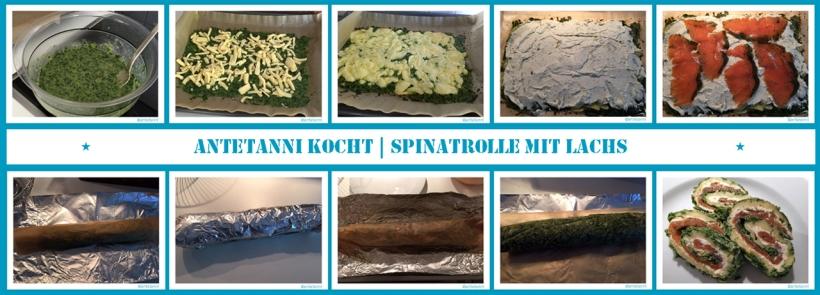 antetanni-kocht_Spinatrolle-mit-Lachs