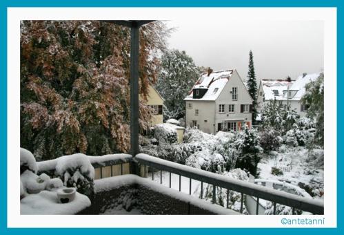 antetanni-fotografiert_Buche-mit-Schnee_2012-10