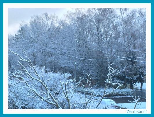 antetanni-fotografiert_Der-erste-Schnee-in-diesem-Herbst_151122