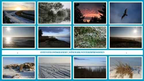 antetanni-fotografiert_Daenemark-im-Winter