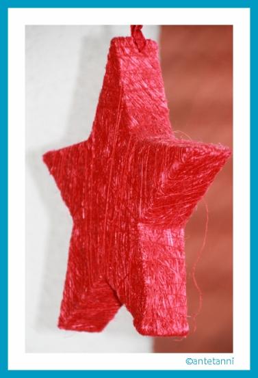 antetanni-freut-sich_Stern-Rot-Weihnachtsdekoration