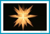 antetanni_Weihnachten_Herrenhuther-Stern