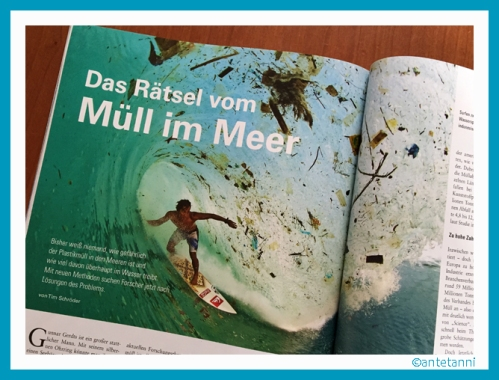 antetanni-liest_Bild-der-Wissenschaft_4-2016_Muell-im-Meer (1)