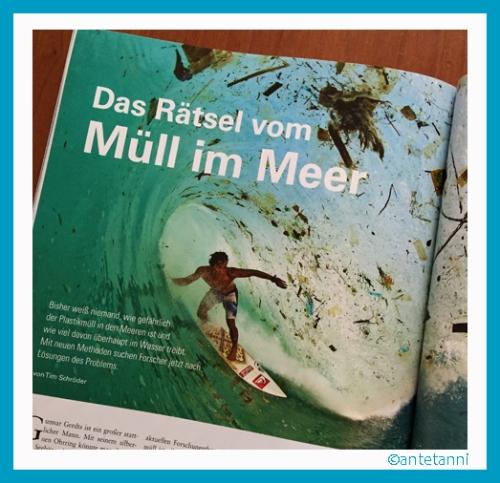 antetanni-liest_Bild-der-Wissenschaft_4-2016_Muell-im-Meer (6)