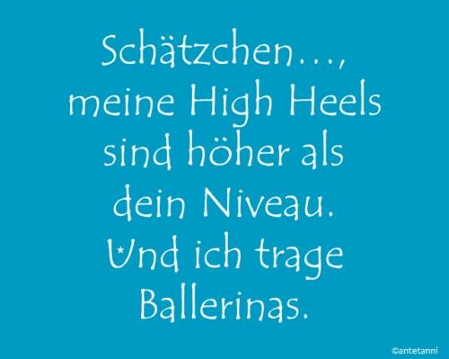 antetanni-sagt-was_Meine-HighHeels-sind-hoeher-als-dein-Niveau-trage-Ballerinas