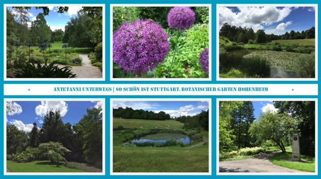 antetanni_Botanischer-Garten-Hohenheim