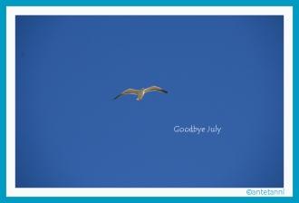antetanni_Moewe_Goodbye-July