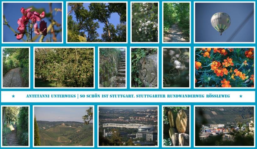 antetanni_stuttgarter-rundwanderweg-roessleweg
