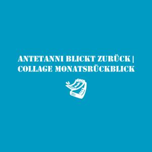 antetanni_button_monatsrueckblick-collage
