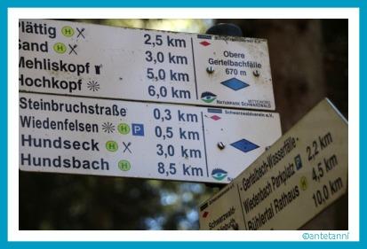 antetanni-unterwegs_Gertelbach-Wasserfaelle-Schwarzwald_2017-04