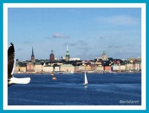 antetanni-unterwegs_Schweden-Stockholm_2017-08 (7)