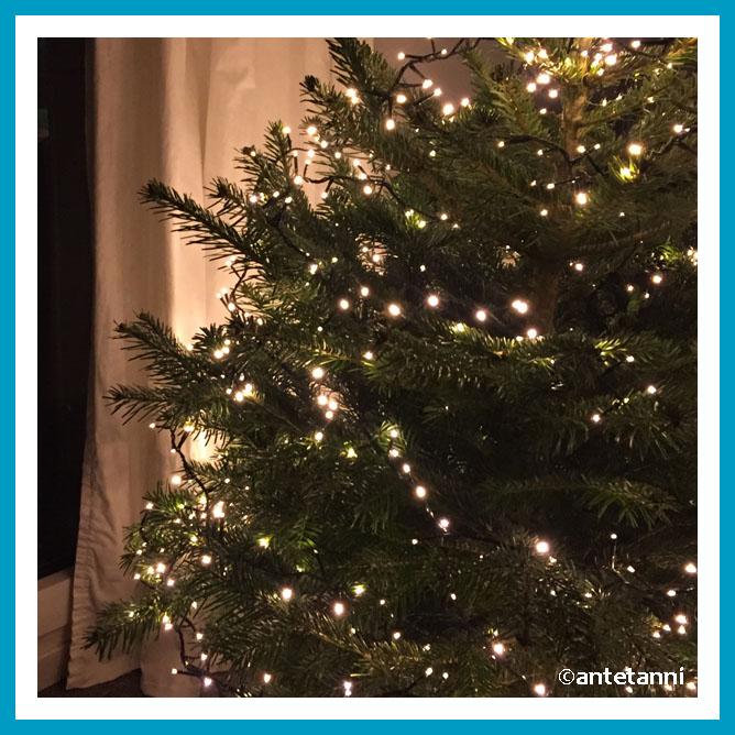 antetanni-weihnachtsbingo-2017-lichterfunkeln