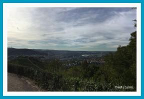 antetanni-fotografiert_Stuttgart-Rotenberg-Wuerttemberg-Aussicht-Untertuerkheim (1)