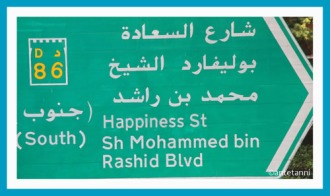 Dubai, Strassenschild, Happiness St, antetanni