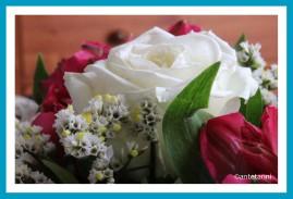 antetanni-fotografiert-Blumenstrauss-geburtstag-2018-07