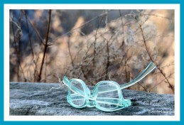 antetanni-unterwegs-Felder-Brille-lost-places-things