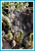 antetanni-unterwegs-rund-um-stuttgart-2018-09-2