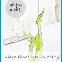 Frühling | antetanni freut sich