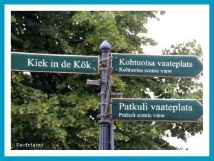 antetanni_AIDAmar_Tallinn-Estland-Ostsee-3 (6)