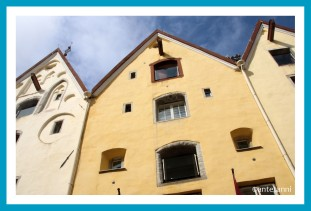 antetanni_AIDAmar_Tallinn-Estland-Ostsee-3 (7)