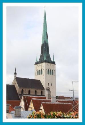 antetanni_AIDAmar_Tallinn-Estland-Ostsee-3_Olaikirche