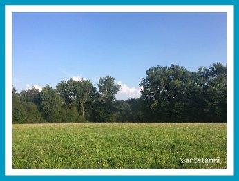 antetanni-unterwegs-Radtour-Katzenbacher-Hof-Stuttgart-Vaihingen (1)