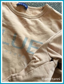 antetanni-repariert-Aermelnaht-eingerissen-Sweatshirt-Strenesse-blue