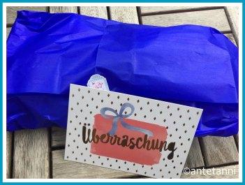 antetanni-starkysstuecke-Tauschliebe-Kleinzeugtasche-Sommerdeko_Verpackung