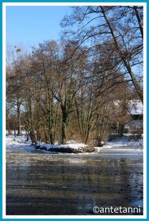 antetanni-fotografiert_52-fotoreise-blogzimmer_wetter_riedsee-12tel-blick-möhringen_22